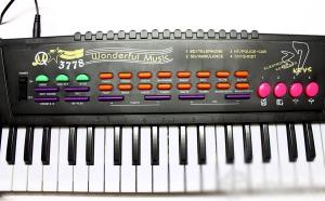 Đàn Organ cỡ lớn 37 phím, sạc bằng điện